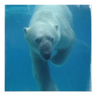 Swimming Polar Bear  Invitations