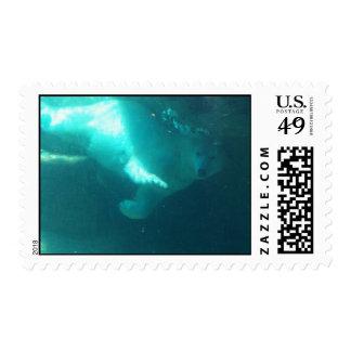Swimming Polar Bear Postage Stamps