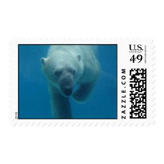 Swimming Polar Bear  Postage Stamp