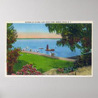Swimming Scene at Cayuga Lake State Park Poster