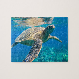 Swimming Sea Turtle Jigsaw Puzzle