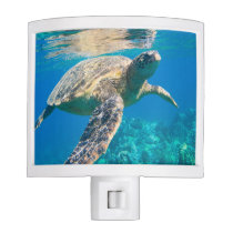 Swimming Sea Turtle Night Light