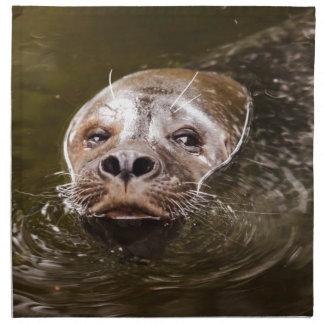 Swimming Seal Cloth Napkins