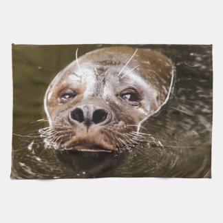 Swimming Seal Towels