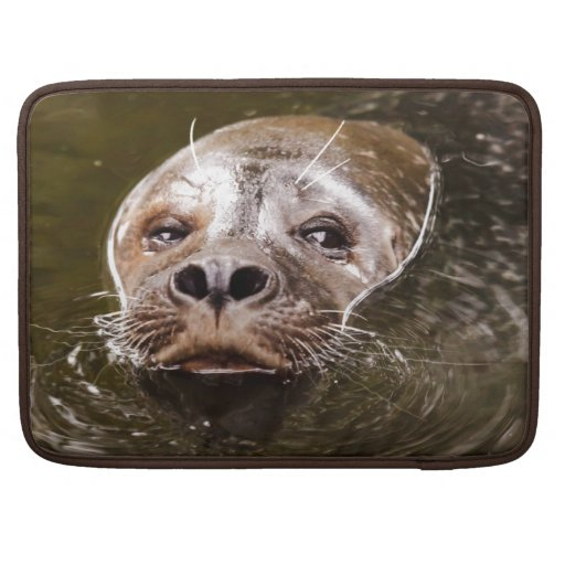 Swimming Seal Sleeve For MacBooks