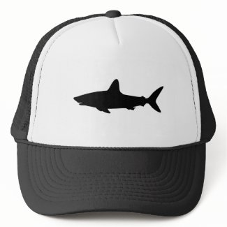 Swimming Shark hat