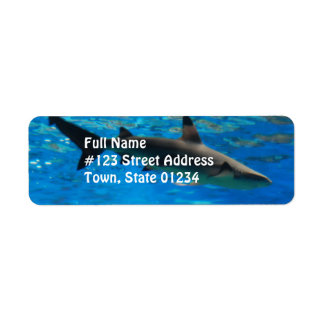 Swimming Shark Mailing Labels