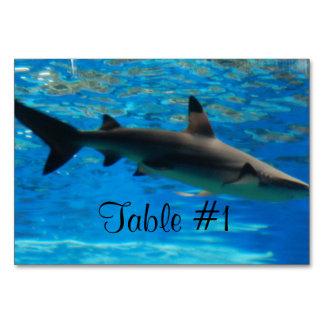 Swimming Shark Table Card