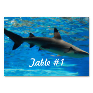 Swimming Shark Table Cards