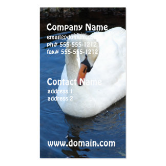 Swimming Swan Double-Sided Standard Business Cards (Pack Of 100)