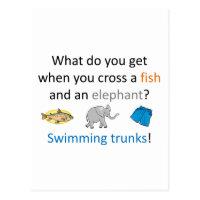 Swimming Trunks Joke Postcard