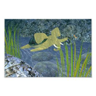 Swimming Turphant Photo Art