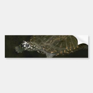 Swimming Turtle Bumper Sticker
