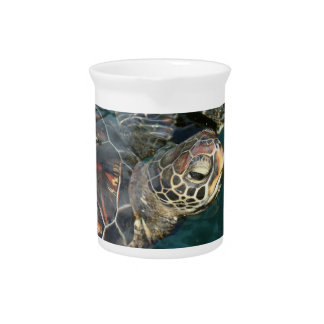 Swimming Turtle Pitcher