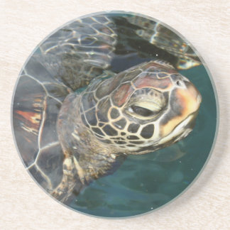 Swimming Turtle Plate Drink Coasters