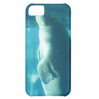 Swimming Walrus Case For iPhone 5C