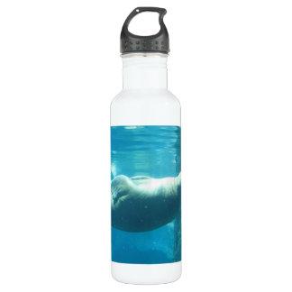 Swimming Walrus 24oz Water Bottle