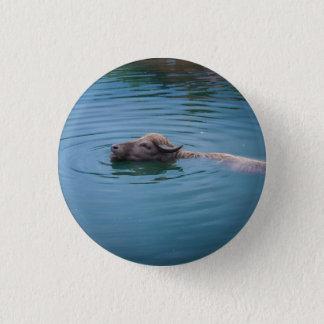Swimming Water Buffalo Button