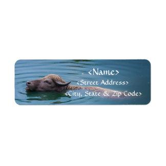 Swimming Water Buffalo Label