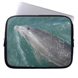 Swimming with dolphins and Dolphin Watch Computer Sleeve