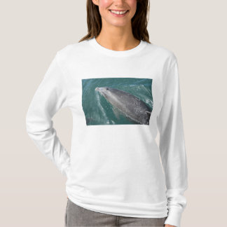 Swimming with dolphins and Dolphin Watch T-Shirt