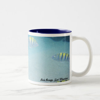 Swimming with fishes mug