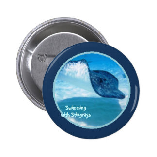 Swimming with Rays Pinback Button