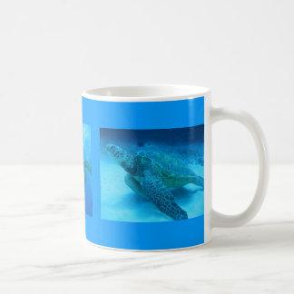 Swimming with Sea Turtles in Hawaii mug
