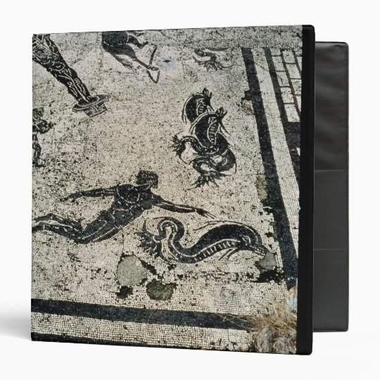 Swimming with the Dolphins, from the Frigidarium o 3 Ring Binder