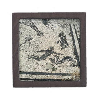 Swimming with the Dolphins, from the Frigidarium o Keepsake Box