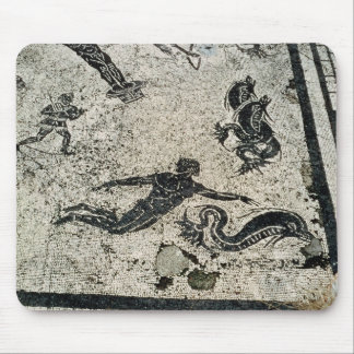 Swimming with the Dolphins, from the Frigidarium o Mouse Pad