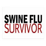 Swine Flu Survivor Postcard