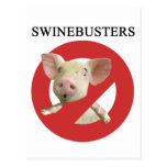 Swinebusters! Post Cards