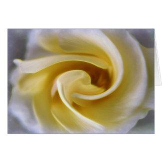 Swirled Rose Card