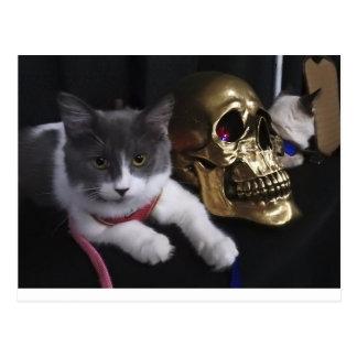 Swirley and Golden Skull Postcard