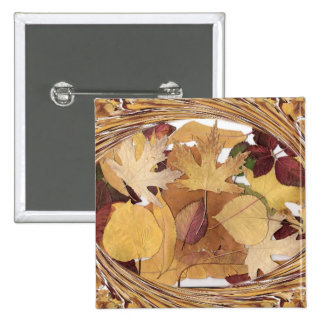 Swirling Autumn Leaves Pin