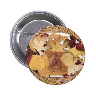 Swirling Autumn Leaves Pins