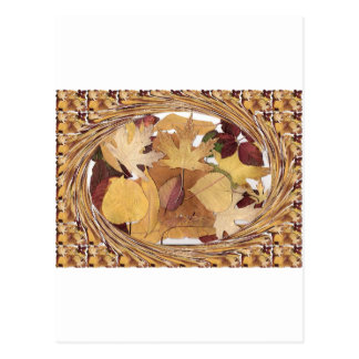Swirling Autumn Leaves Postcard