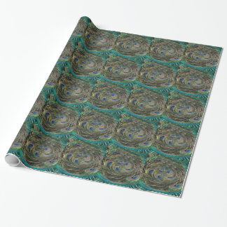 Swirling Feathers Wrapping Paper