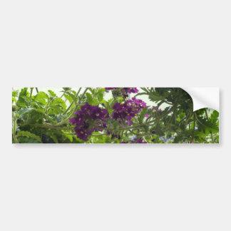 Swirling Purple Verbena Car Bumper Sticker