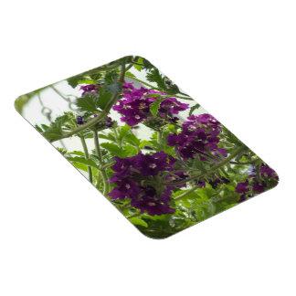 Swirling Purple Verbena Magnet