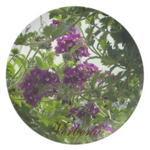 Swirling Purple Verbena Party Plates