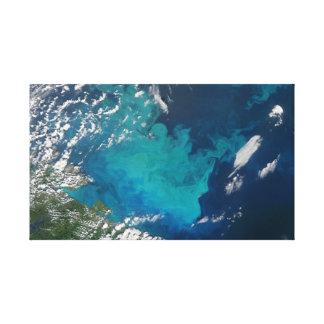 Swirling Turquoise Ocean Earth Art Canvas Print