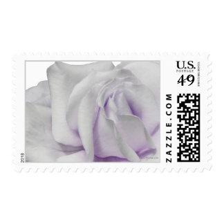 Swirly Pale Violet Lavendar Wedding Postage
