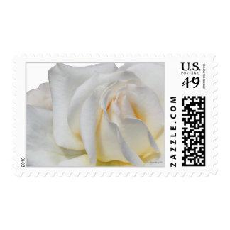Swirly Pale White and Yellow Wedding Postage