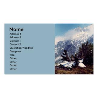 Swiss Alps Business Card