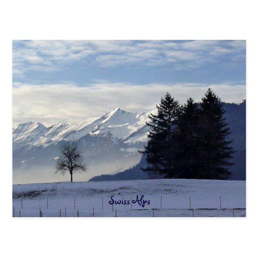 Swiss Alps Post Cards