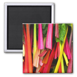 Swiss Chard 2 Inch Square Magnet