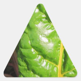 Swiss Chards Triangle Sticker