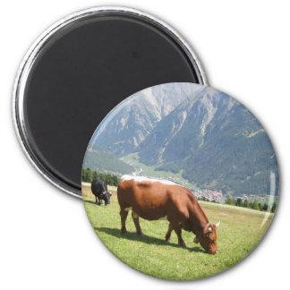 Swiss Cow 2 Inch Round Magnet